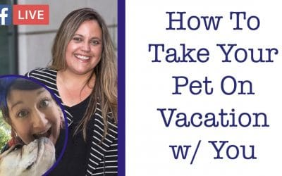 Taking Your Pets on Vacations Tips with Becki Davis – Critter Chat Episode 2